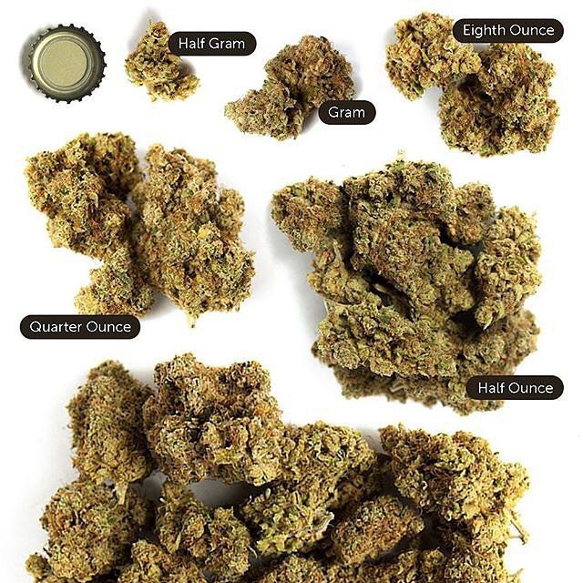ounce guide 1 4 3 16